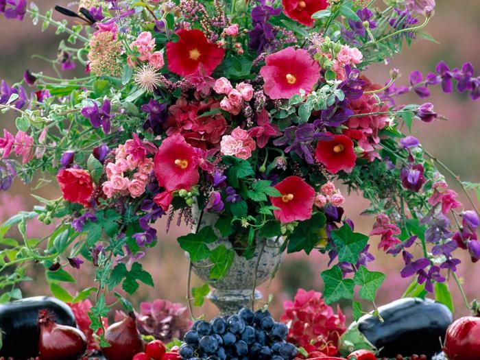 картинки на рабочий стол август цветы № 409702 загрузить